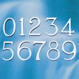 Satin Chrome Door Numbers