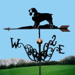 Spanial Traditional Weathervane